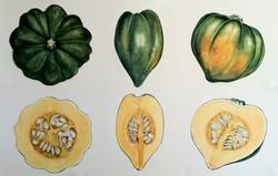 Harvest, Mary Lawler