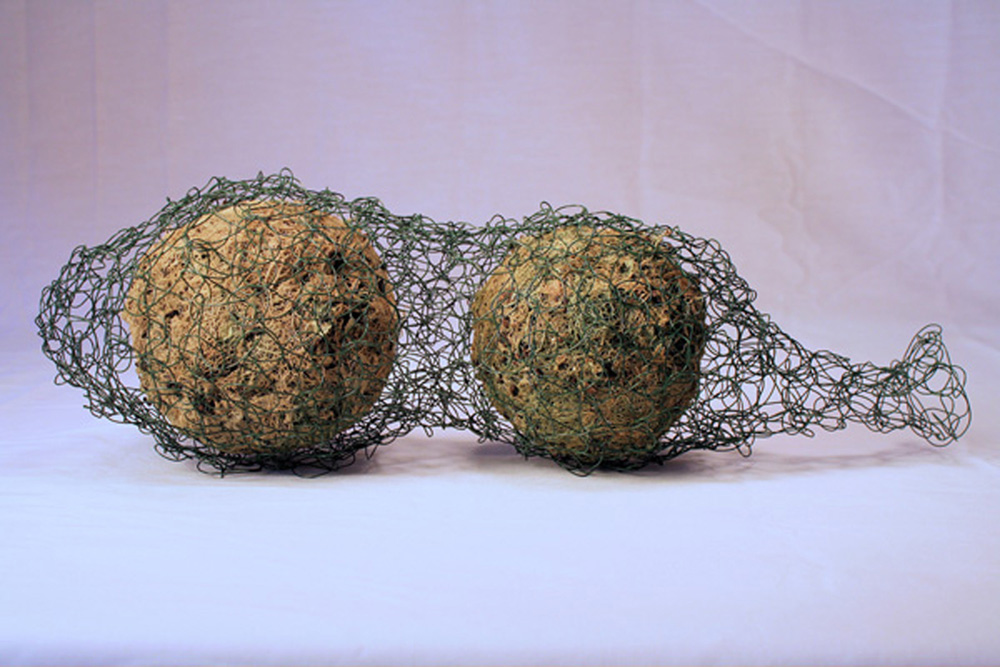 Mitchell-Caught-4_x_14_x_5″,_wool,_lichen,_wire;_handfelted,_crocheted._2012.jpg