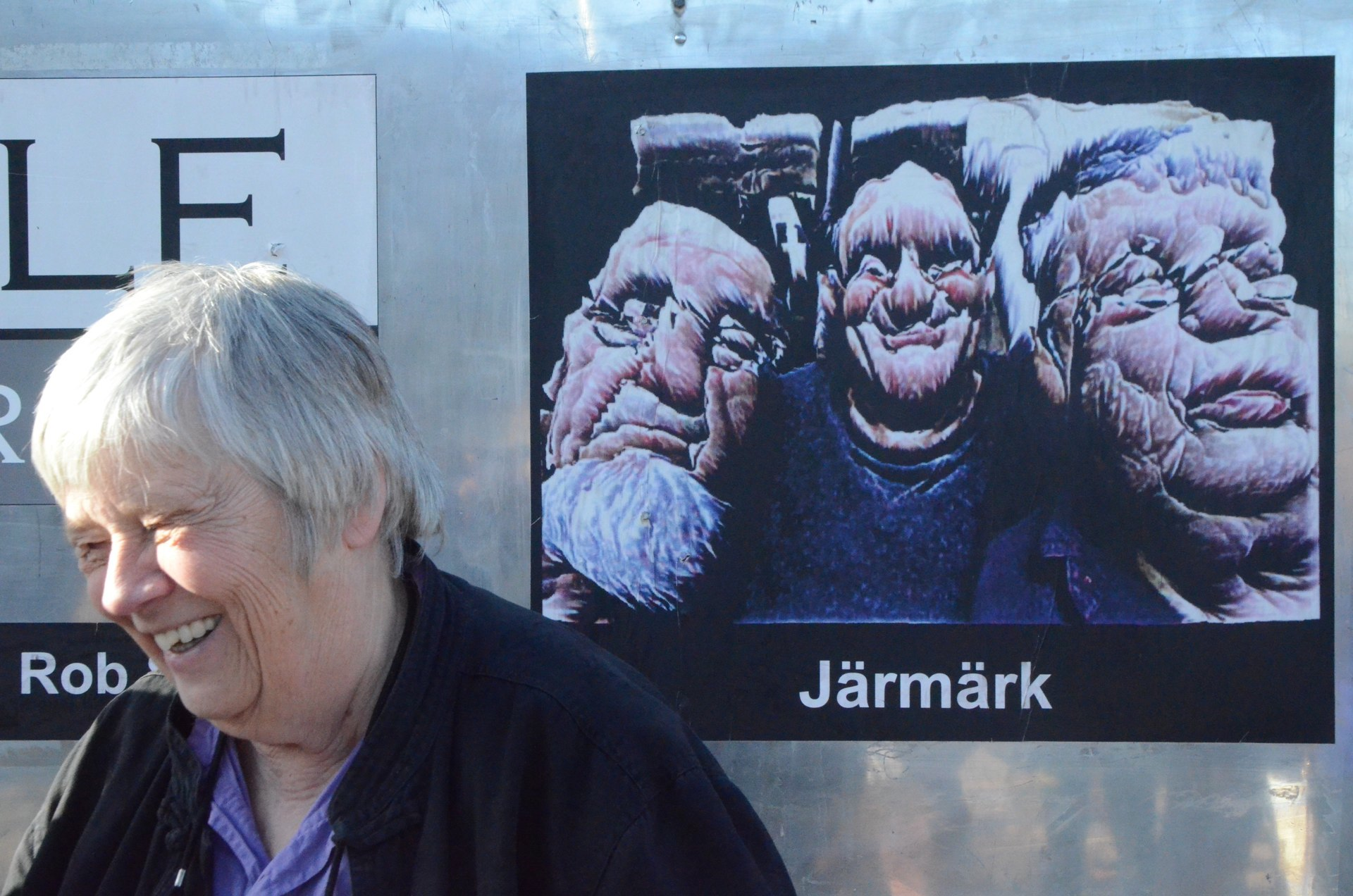 Jarmark Steina
