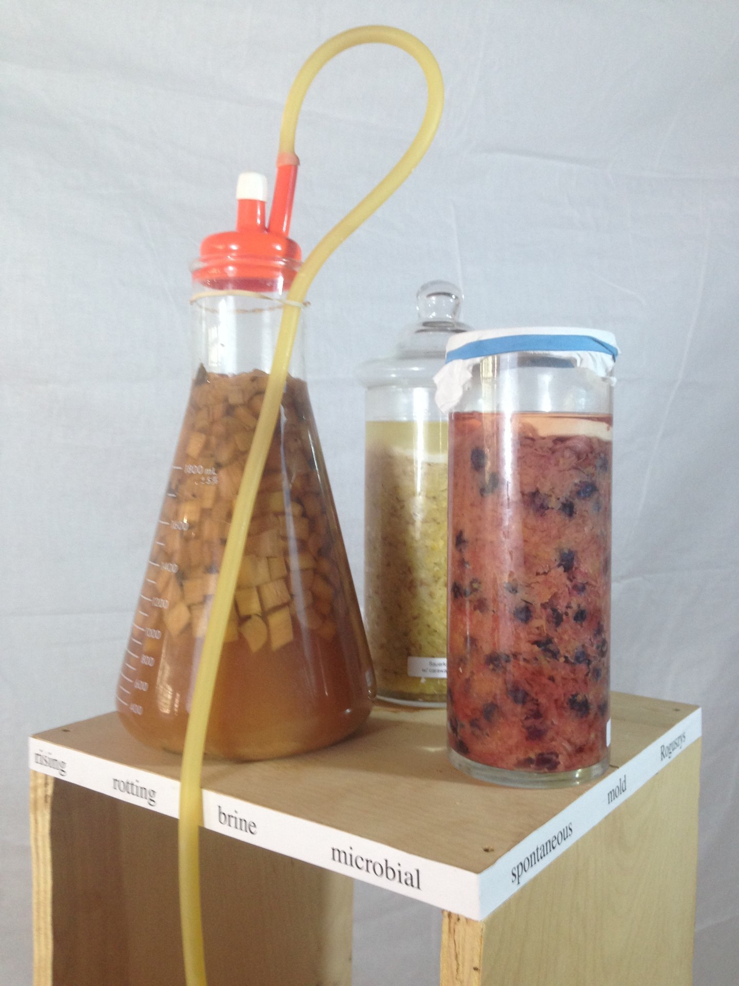 Axle Fermentation laboratory