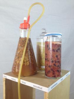 Axle Fermentation laboratory