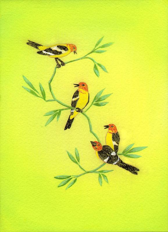 Lisa de St. Croix Birds