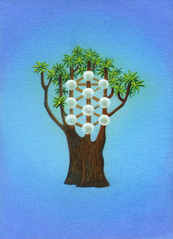 Lisa de St. Croix Tree