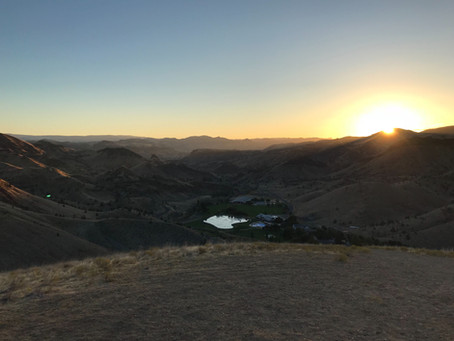 Bible Camp and Beyond