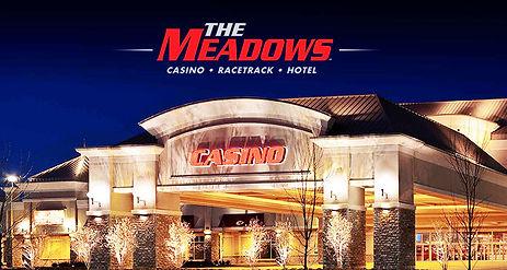 2020 Meadows Logo and Bldg.jpg