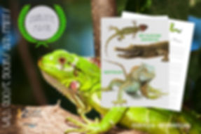 04 - Nature Journal Promo - Reptile.jpg