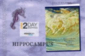 Hippocampus Promo.jpg