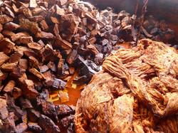 écorce de palo de aguila