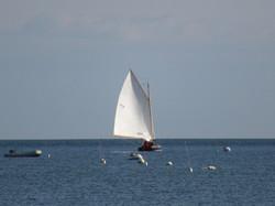 Gaff Rig Fall Sail