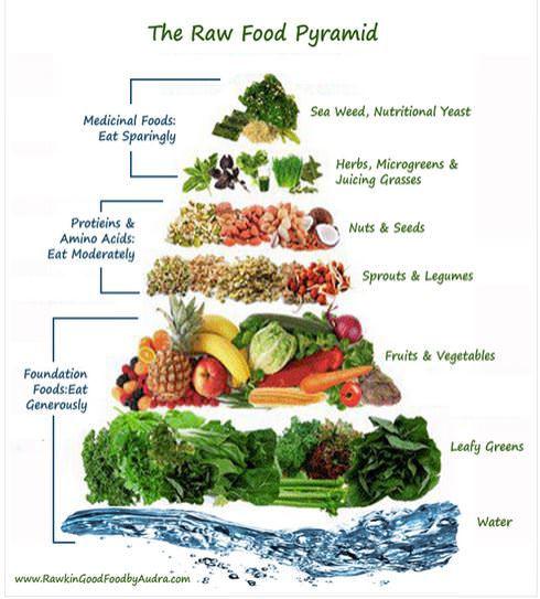 Raw Energy Raw Food Pyramid