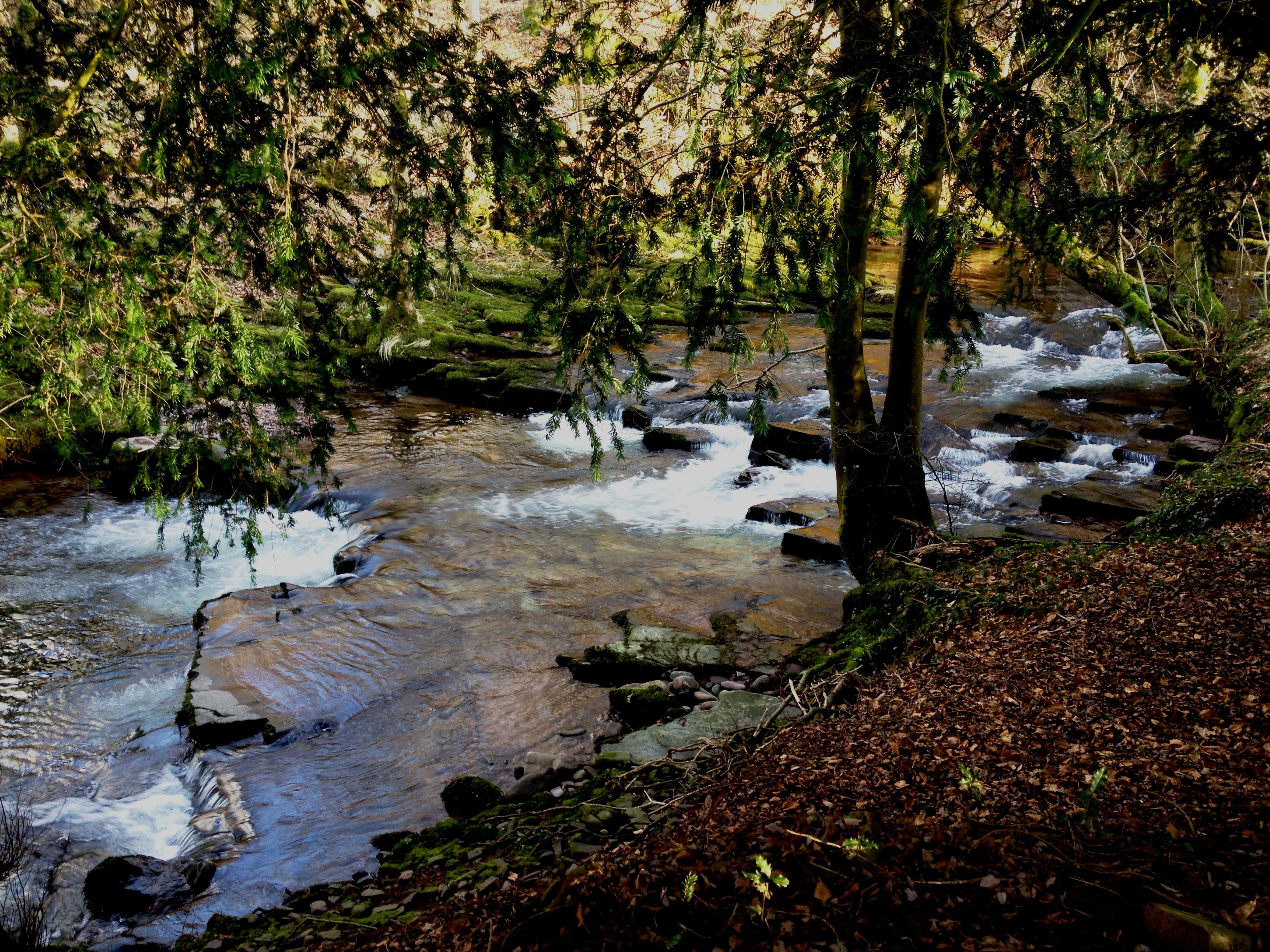River Cynrig