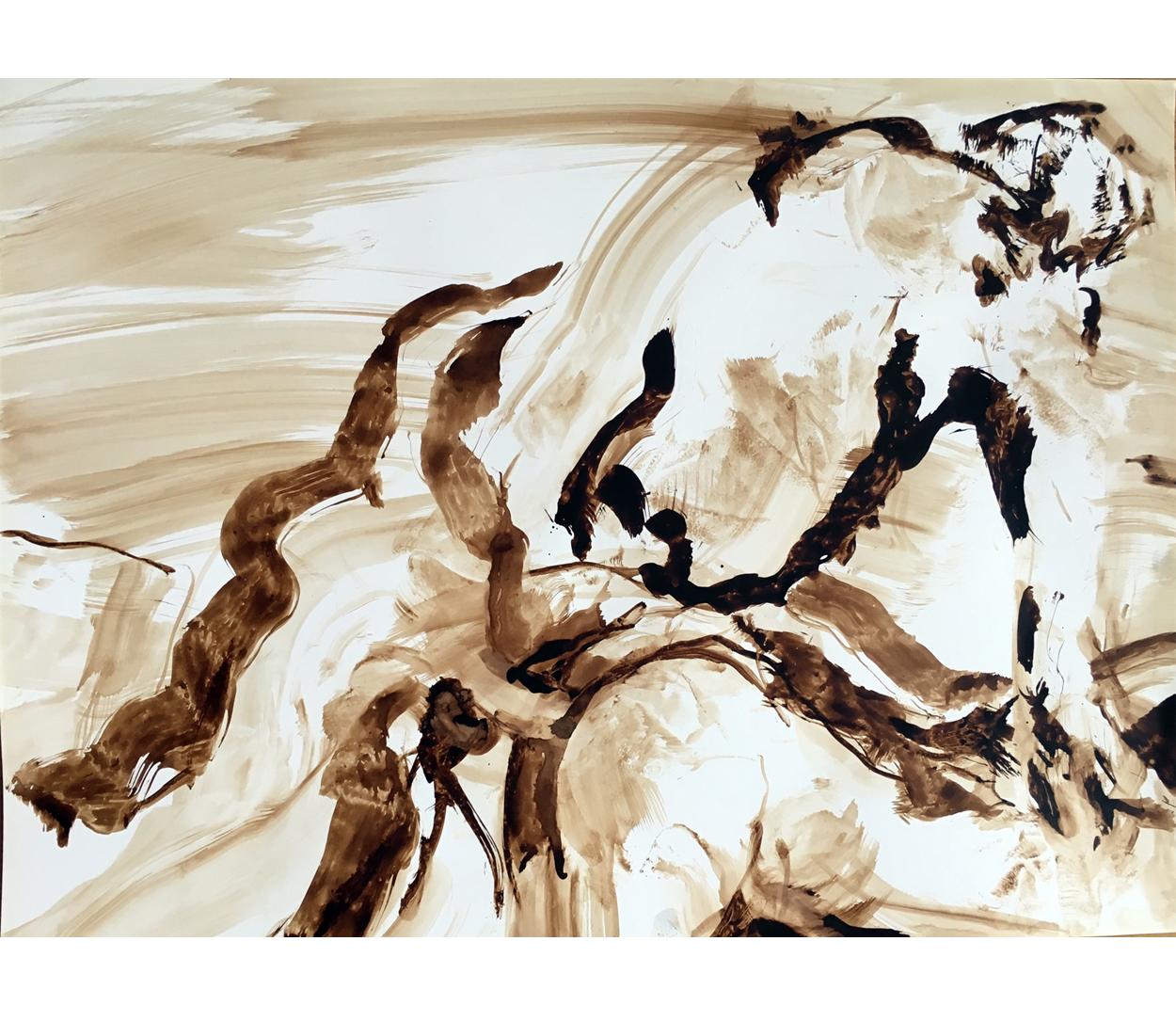 brou de noix/Canson 6, 64x45 cm