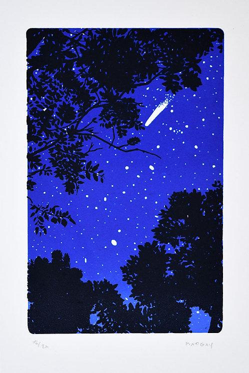 Dicen las estrellas.