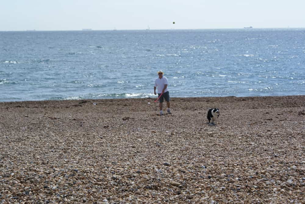 Brian and Maddie with Ball - Hayling Isl