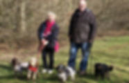 Experienced-Dog-Sitters.jpg