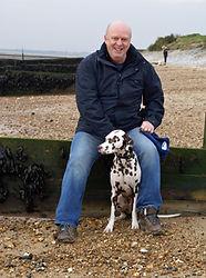 Arlo-dog-sitting-Colchester.jpg