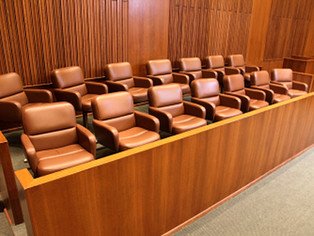 A TRIAL CONSULTANT'S EXPERIENCE WITH JURY DUTY