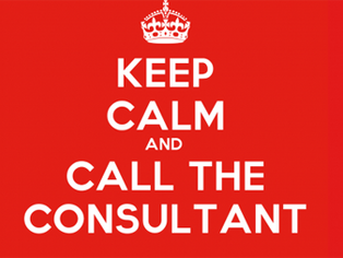 JURY CONSULTANTS OR LITIGATION CONSULTANTS? WHY NOT BOTH?