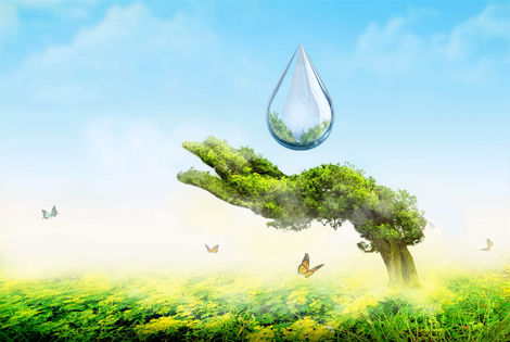 tree in the field fantasy with water dro