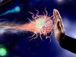 Comment fonctionne notre immunité ?