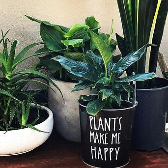 Plants make us happy! #magicdirt #mandur