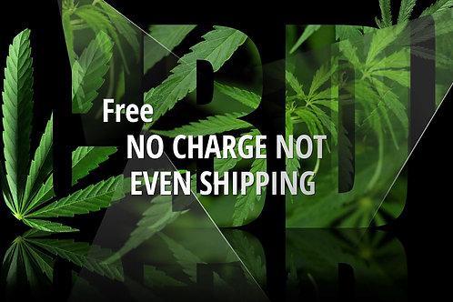 buy 5 get 5 Free CBD Tinctures