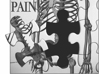 The Puzzle of Pain