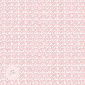 piedoiseau - web2.jpg