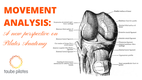Movement analysis: A new perspective on Pilates Anatomy