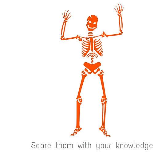 Skeleton knowledge