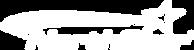 northstar logo.png