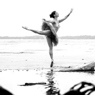 Free The Dance
