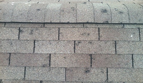 Hail damaged shingles, West Michigan Roofing, Insurance Claim. Roofing Expert, Endura-Roof, Free Roof Inspection