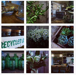 wild about flowers Instagram page showing florals, foliages and flower shop interior