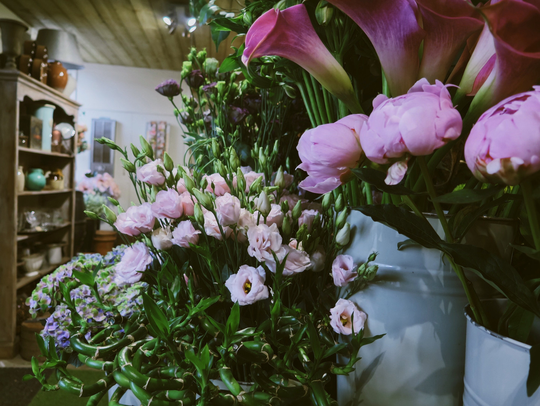 Flower shop in Bristol