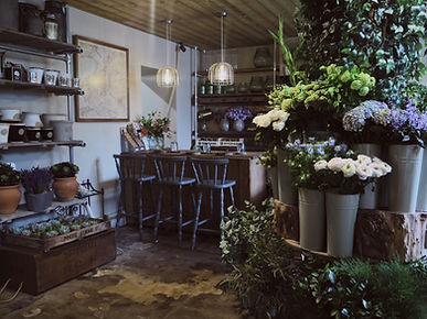 Industrial interiors of retail florist wild about flowers