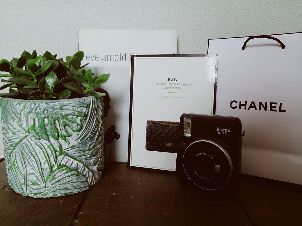 A shelf display of black and white fashion books, a polaroid camera and a botanical succulent house plant pot