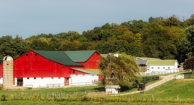 An Amish horse and buggy travel past a red barn in Holmes County Ohio