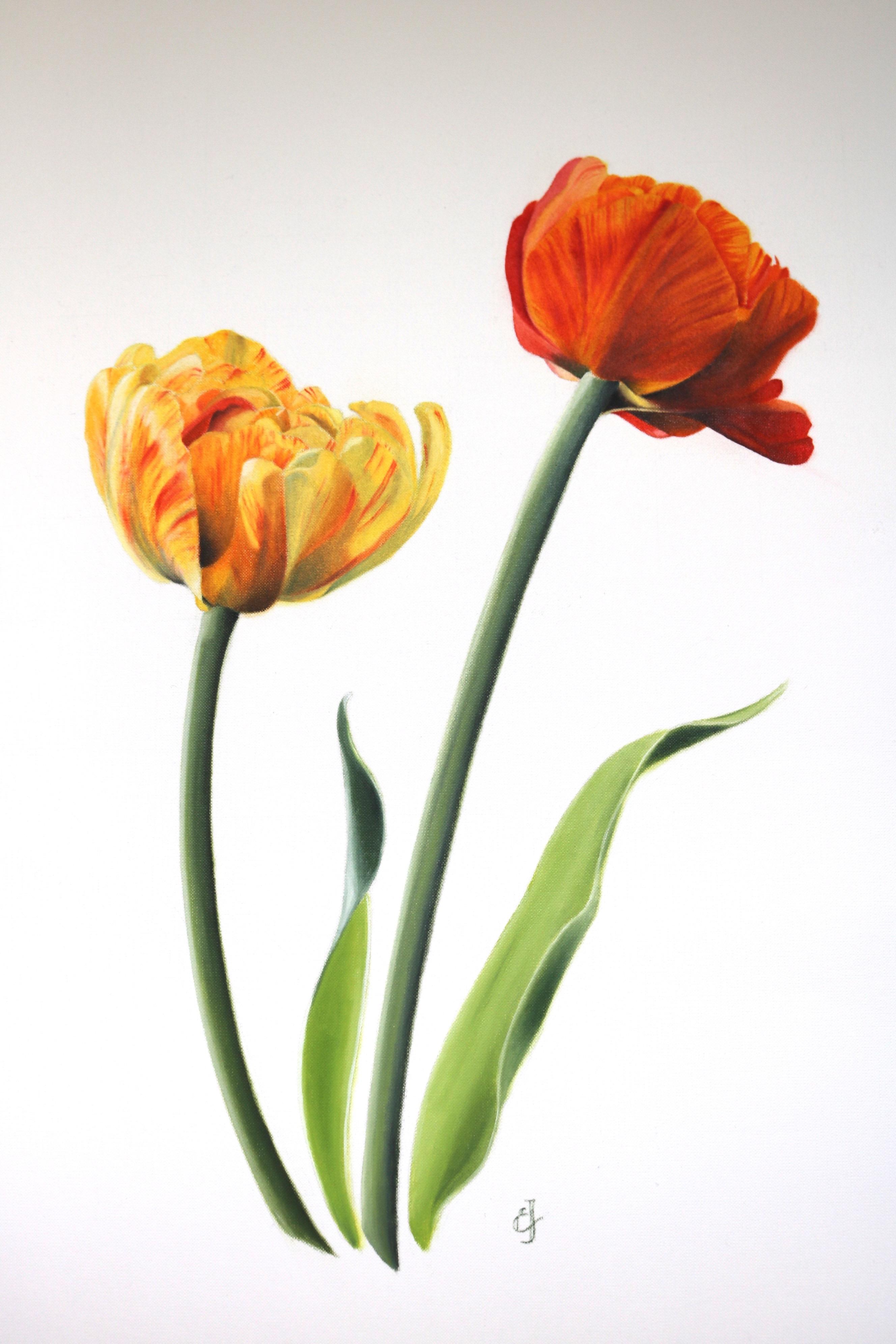 Sun Lover tulips