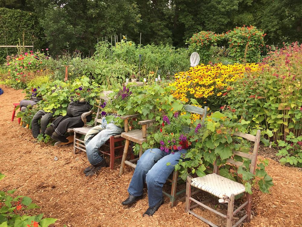 Comment cultiver en pot et à la verticale?