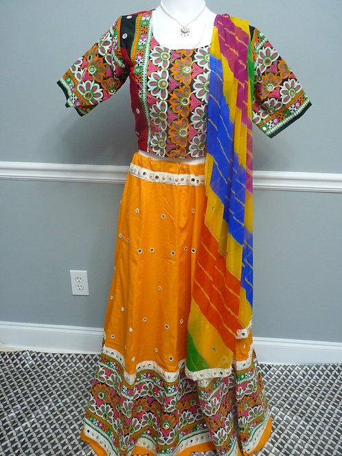 Traditional Heavy Embroidered Chaniya Choli