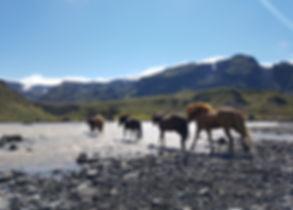 Thorsmork valley in Iceland