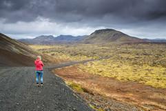 Lavafield in Reykjanes Peninsula