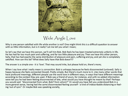 Wide Angle Love