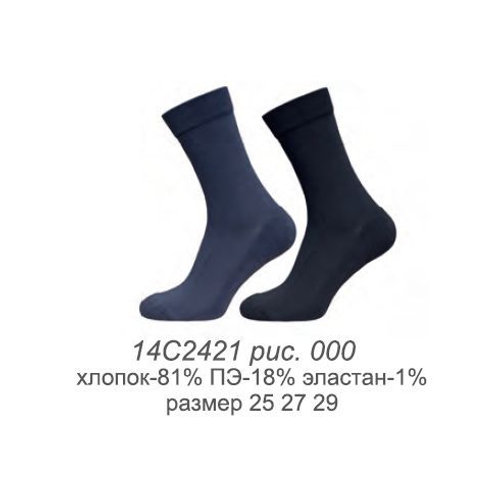 2421 Носки муж. Arctic (40)