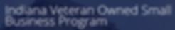 IVOSB Logo.png