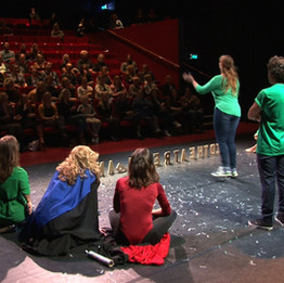 cultuurlandschap overijssel in de zaal en vrienden op het podium