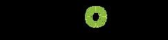 achronix logo.png