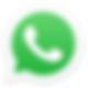 WhatsApp_Logo_2.png