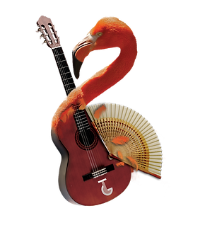 Guitare_flamand.png